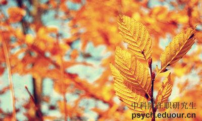 心理研究所在职研究生北京地区招生专业讲解